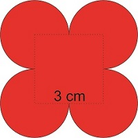 What is the surface of the flower? Consider that [tex]\pi=3.14[/tex]